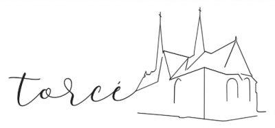 logo torce_512
